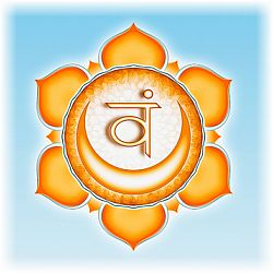 """sacral-chakra-color """"width ="""" 250 """"height ="""" 250 """"srcset ="""" http://www.anahathanor.com/wp-content/uploads/2019/05/1557498142_137_Couleurs-de-Chakra-Signification-des-couleurs-des-7-chakras.jpg 250w, http: //www.spiritualcoach.com/wp-content/uploads/2016/02/sacral-chakra-color-150x150.jpg 150w """"values ="""" (largeur maximale: 250px) 100vw, 250px """"/></p></noscript><p><strong>La couleur du chakra sacré est orange</strong> et est étroitement liée au rouge en fréquence mais fonctionne à une vibration plus élevée. L'orange est la couleur du soleil et de la chaleur; Il est expressif et créatif et respire l'énergie et la force. Les glandes associées incluent la <strong>les ovaires</strong> et<strong> testicules</strong> et les organes liés à ce chakra comprennent le <strong>système reproducteur </strong>et<strong> intestins inférieurs</strong>.</p><p>Émotionnellement, l'orange s'identifie à <strong>bonheur, vitalité, joie, sagesse</strong> et <strong>la créativité.</strong> Il est également associé à <strong>instinct</strong>. Connecter et alimenter l'énergie de ce chakra par le chakra du plexus solaire jusqu'au chakra du coeur permet l'interaction des sentiments d'intestin avec les désirs basés sur le coeur. Ceci est important car la plupart des gens agissent à un niveau mental de pensée, ignorant la sagesse de leur instinct et la direction de leur cœur. C'est pourquoi beaucoup de gens se sentent perdus et isolés. Lorsque l'énergie orange du chakra sacré coule, elle permet à des idées créatives d'émerger, à une direction claire et à la réalisation du but de la vie.</p></p><h3><span class="""
