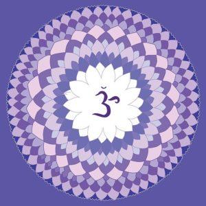 7 Sahasrara le chakra de la couronne reikishamanichealing